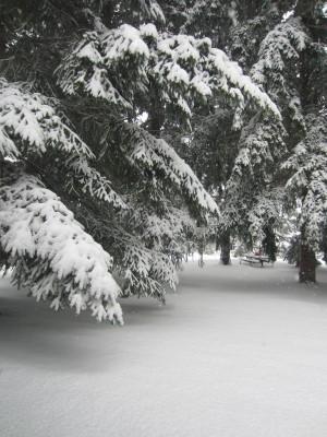 December 2013 Snow 026
