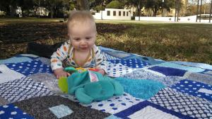 Austin on Tranquil Forest quilt