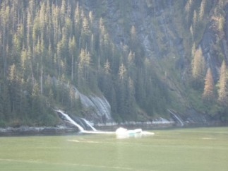 More waterfalls in Tracy Arm