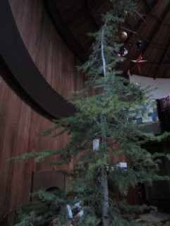 Christmas Tree 2014 021