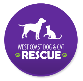 westcoastcatrescue