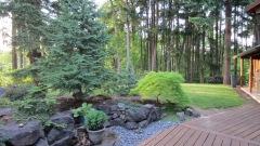 May 2020 Garden